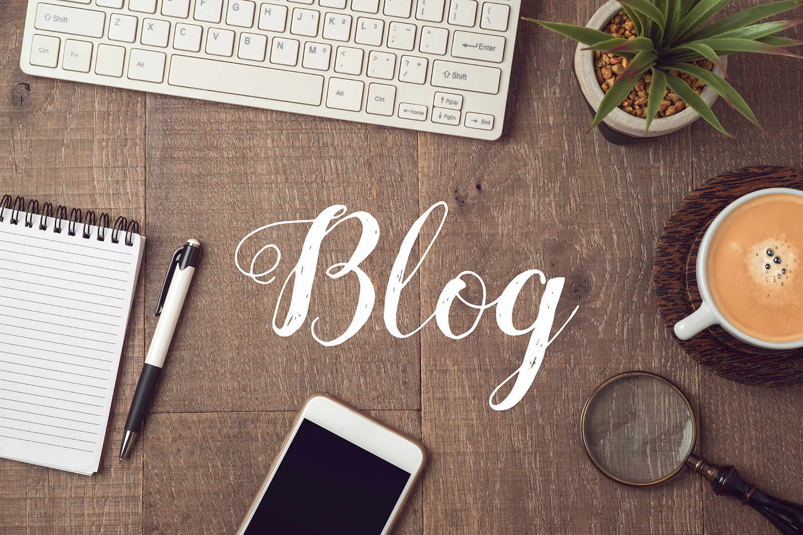 Блог Фолиной Л.Р.