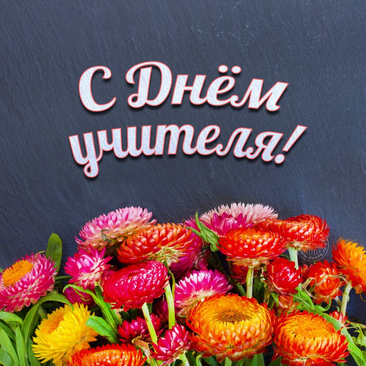 5 октября «Всемирный День учителя»!